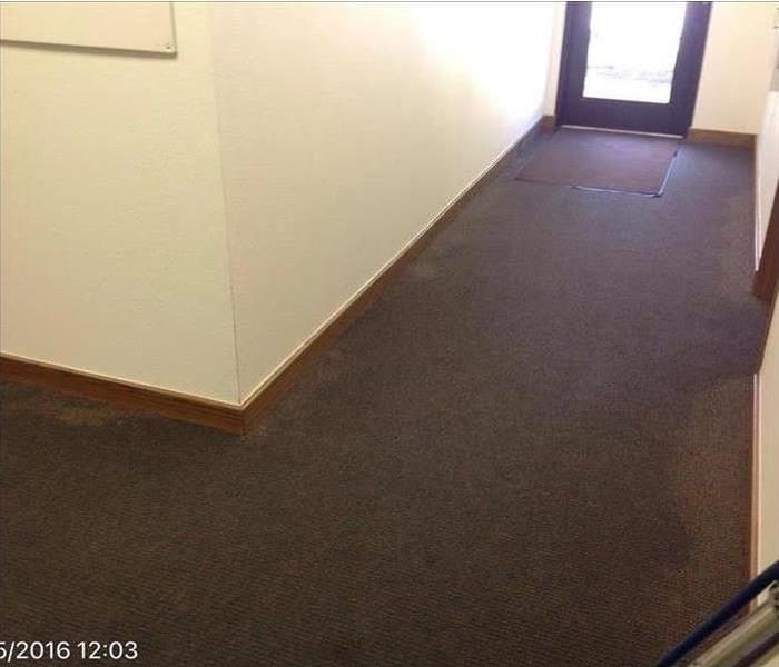 soaked brown carpet in hallway area