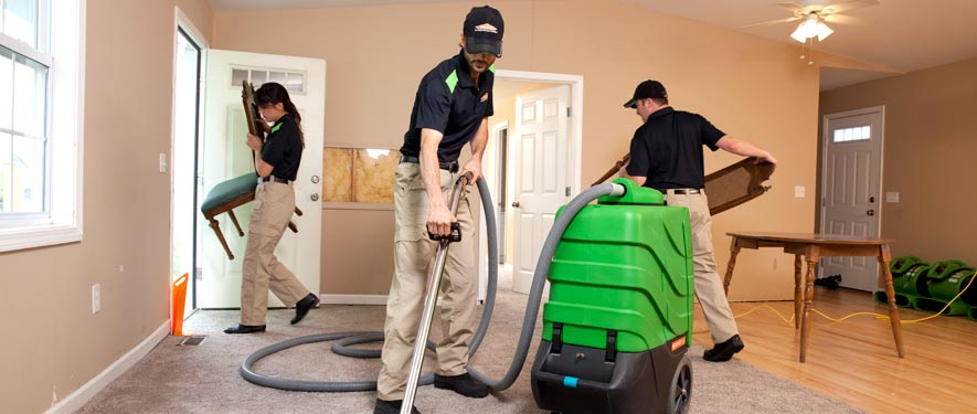 New Haven, CT cleaning services